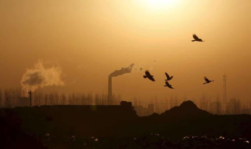 STEEL PRODUCERS SCRAMBLE TO MEET GOVT. SMOG RULES AHEAD OF WINTER CURBS